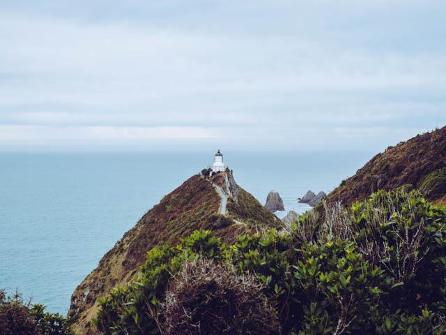 nugget point dunedin neuseeland