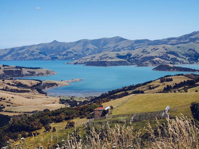 Neuseeland Roadtrip Akaroa
