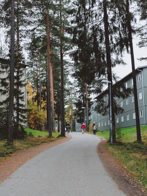 erasmus umea university