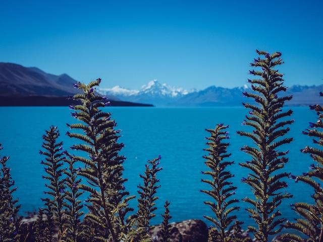 neuseeland weltreise route